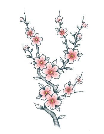 Tattooed Now! - Cherry Blossom (Sakura)